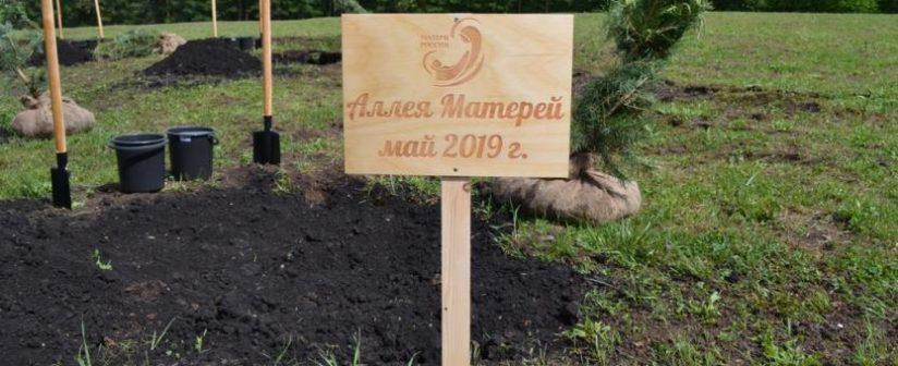 18 мая в Уфе состоялось торжественное открытие «Аллеи Матерей»
